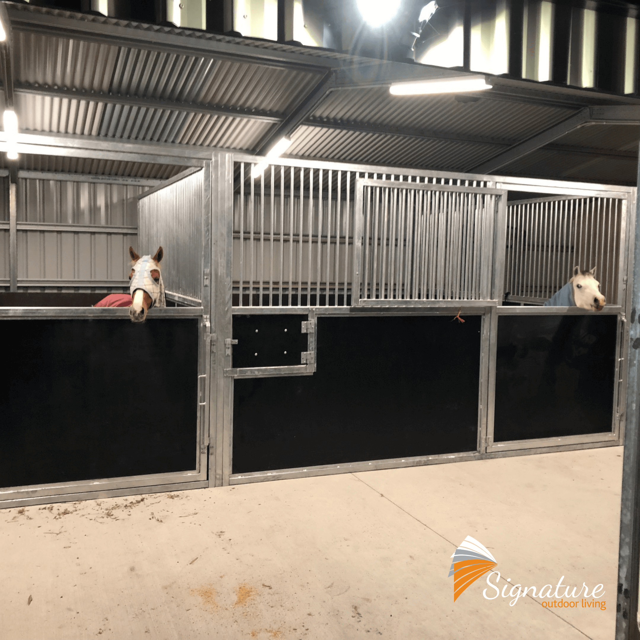horse stables stable construction signature outdoor living sunshine coast brisbane